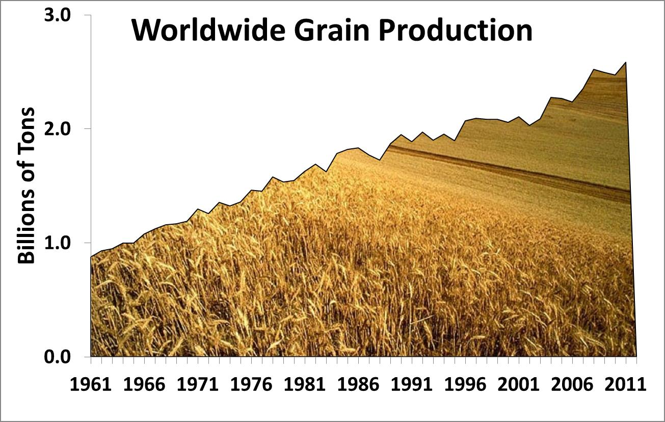 world food production The green revolution food production is increased either by cultivating more land or by producing bigger yields since 1950, increases in yield have come from what is commonly called the green revolution.